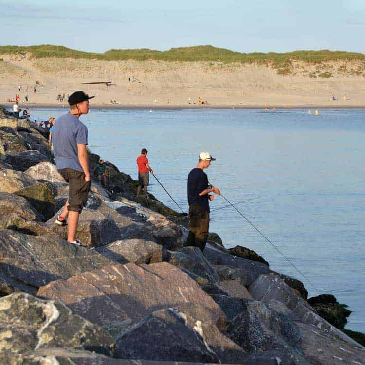 fiskeri fra molen