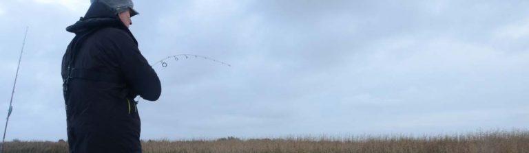 lovpligtig fisketegn danmark