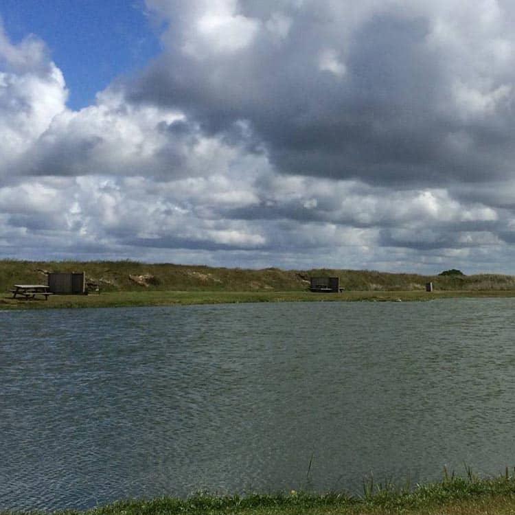 Klegod fiskesø