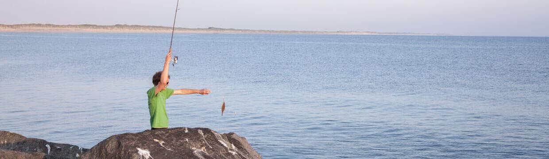 Skrubbe fiskeri på molen