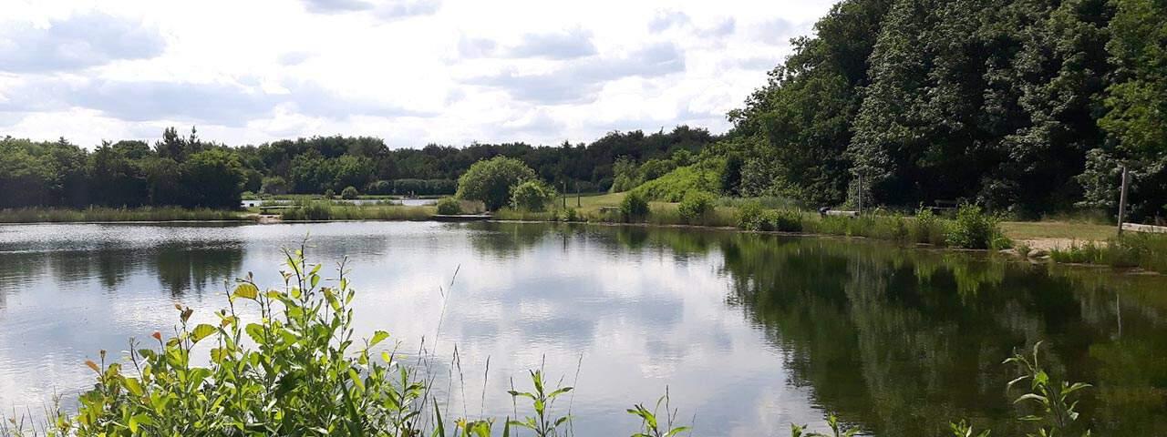 Arrild Fiskesee – Put & Take in schöner Umgebung.