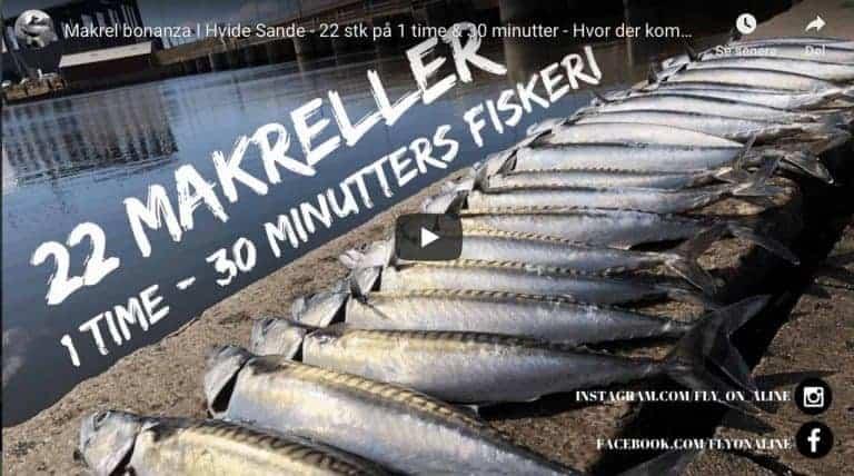 video med makrelfiskeri