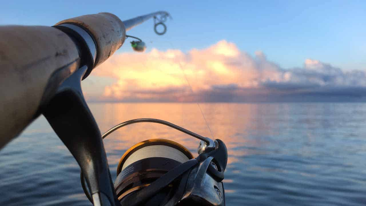 fjordfiskeri efter havørred