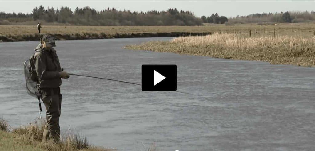 Video med laksefiskeri skjern Å