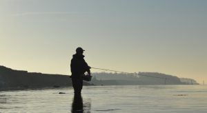 havørred fiskeri