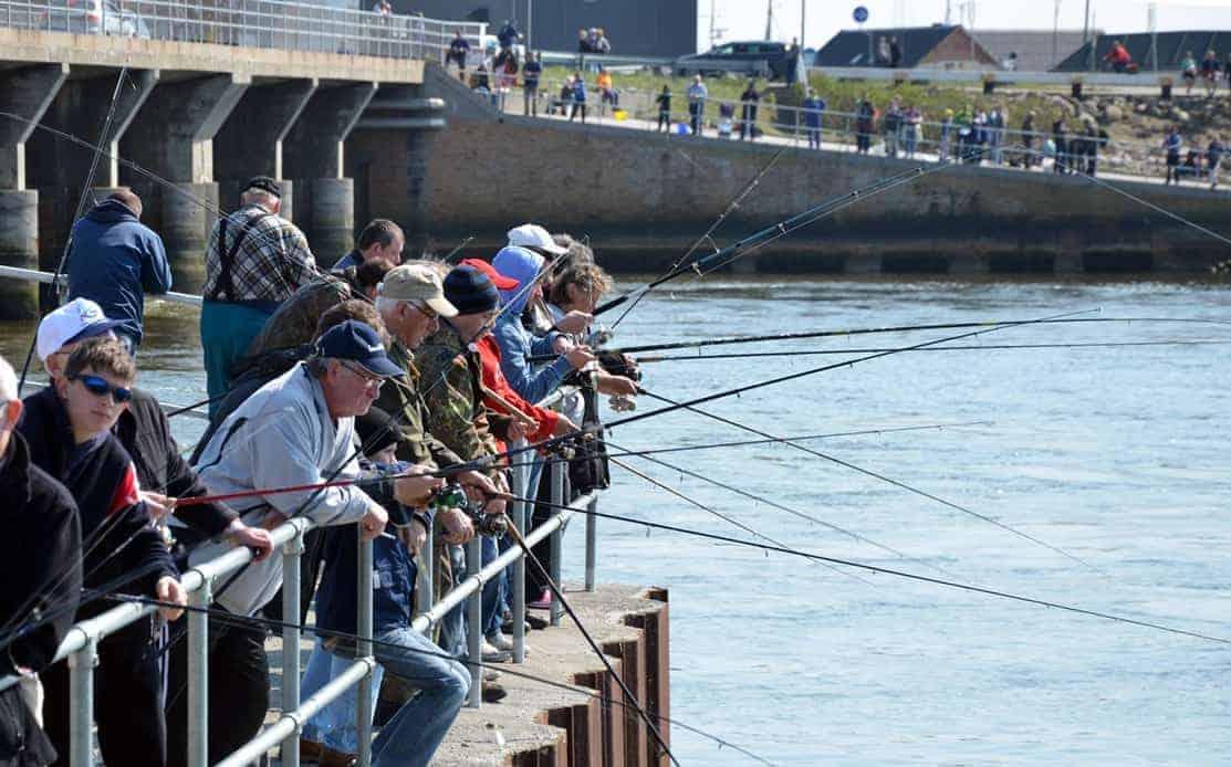Sildefiskeri efter høstsild