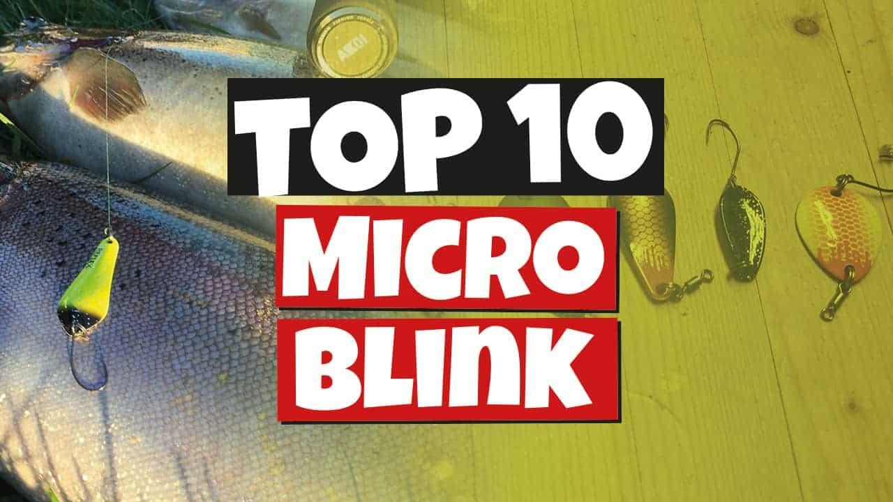 Top 10 microblink