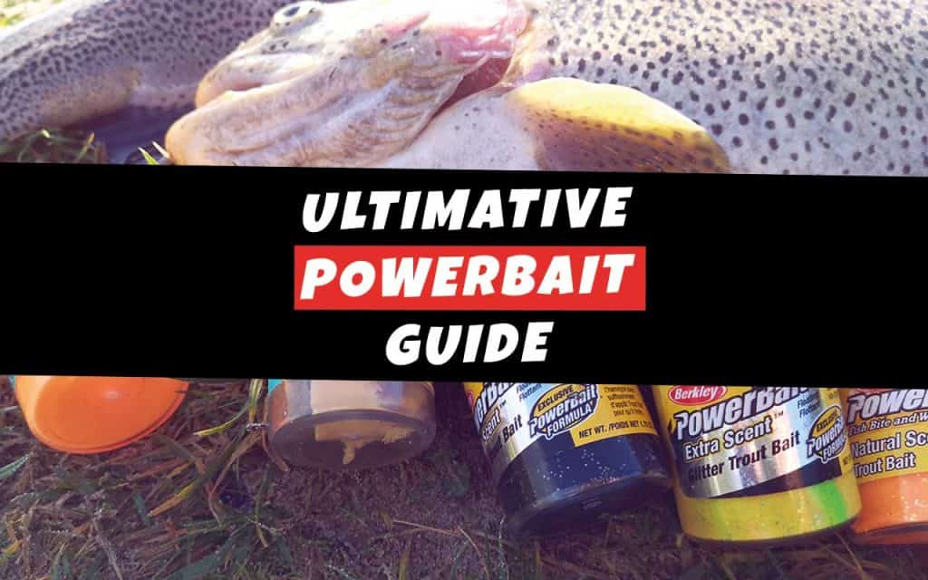 Den ultimative PowerBait Guide