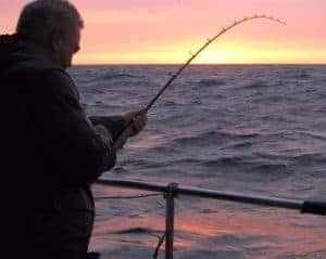fisketur det gule rev