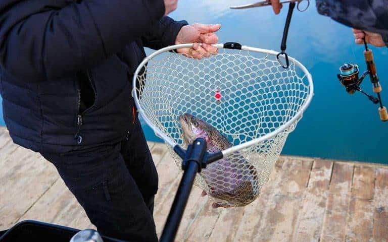 fangstnet guide