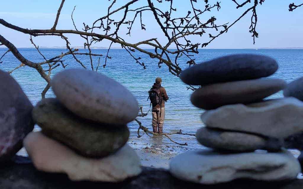 fiskeri på kysten