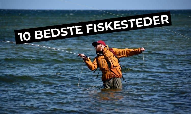 bedste fiskesteder